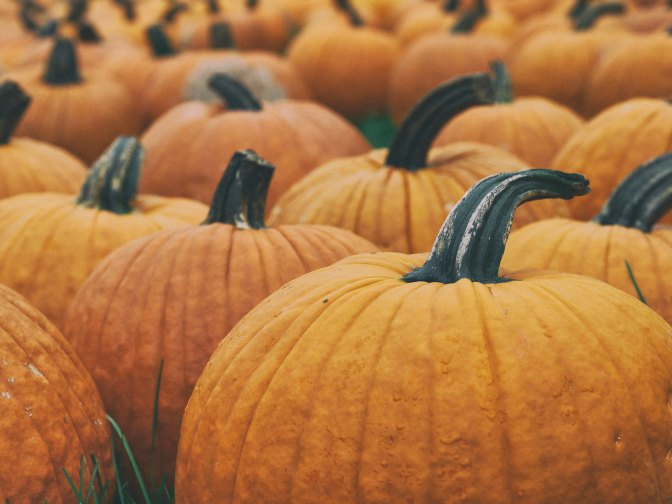 What Are The BENEFITS of Pumpkin?