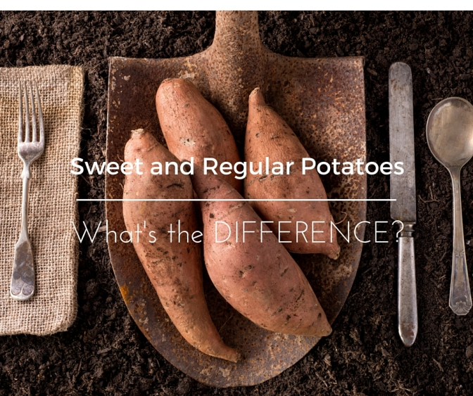 What is the difference in Sweet Potatoes and Regular Potatoes?