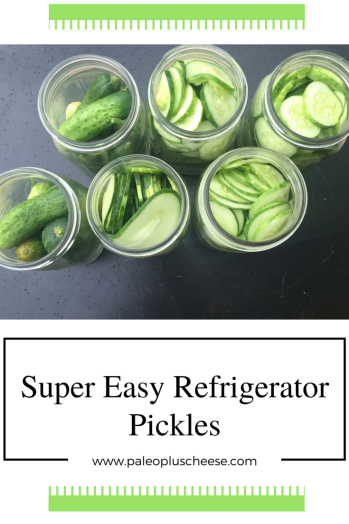 dill pickle pinterest