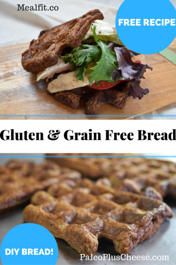 Gluten and Grain Free Bread