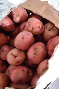 Yummy Red Potatoes