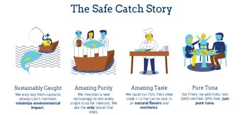 SafeCatchInfo